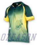 Le dri a ajusté n'importe quel modèle de logo de couleur vos Jersey de cricket d'équipe