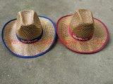 Поощрение Red Hat соломы Custom Red Hat соломы оптовой (DH-LH7210)
