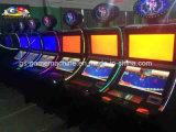Machine van het Spel van de Visserij van de Machine van het Spel van de staaf de Muntstuk In werking gestelde Video