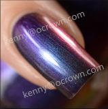 Pigmento cambiante della polvere del Chameleon di colore magico per il polacco del gel del chiodo