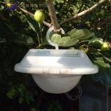 Lumière légère campante actionnée solaire du relevé de DEL (T7091)