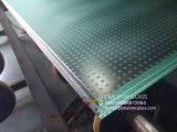 Psc stratifiés Le verre trempé pour l'escalier de verre