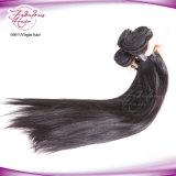 Cheveu droit humain péruvien d'usine directe de cheveu d'OEM
