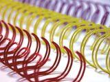 Nylon-Überzogener doppelter Schleifen-Draht