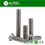 Vis principale plate d'acier inoxydable/fraisée Torx de garantie (SS304 Ss316)