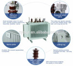 11kv de ElektroTransformator van de Reeks 630kVA van de Transmissie van de macht S11