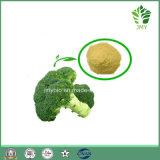 Extracto natural puro del brote del bróculi/extracto Sulforaphane 0.5%-98% del bróculi