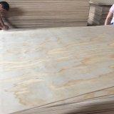 Madera contrachapada irregular de madera de pino del grano del grado de B/C
