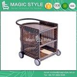 Carrello di vimini esterno con il carrello di vimini del buffet del carrello del ristorante del carrello delle rotelle (stile magico)
