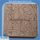 316L Blad van het Roestvrij staal van het Patroon van PVD het Kleur Geëtstea