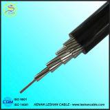 Câble en aluminium d'ABC isolé par PVC de faisceau de vente chaude