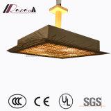 2017 heißes Verkaufs-Eisen-künstlerische hängende Lampen, die für Wohnzimmer beleuchten
