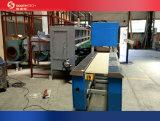 Southtech que pasa la máquina de cerámica del rodillo del vidrio plano (TPG2003)