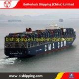 Expédition de marchandises en provenance de Chine au Chili Iquique conteneur transitaire de logistique