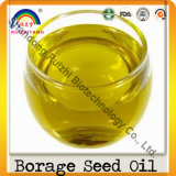 Extrato de borragem puro 20: 1, Extrato de borragem 4: 1, óleo de semente de borragem