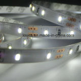 IP65 impermeabilizan la tira flexible de los 60LEDs/M SMD3014 LED