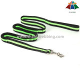 Fábrica Direta Hot Sale Bungee Dog Lead, Hands Free Running Dog Leash
