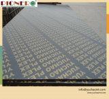 Shandong Ciass alta cara de madera contrachapada de películas