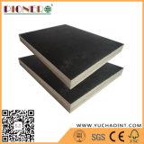 Núcleo de madera dura película negra enfrenta de mejor calidad de madera contrachapada