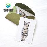 La alta calidad de impresión de tarjetas postales De un gato