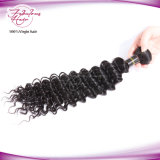 Luxe de qualité Malais Deep Wave Virgin Human Hair Weft