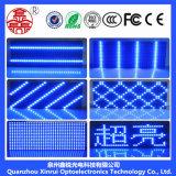 P10 esterni scelgono la visualizzazione blu del testo dello schermo del modulo del LED