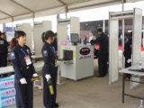 Gewölbten Weg der Sicherheits-33 Zonen durch Metalldetektor überprüfen
