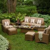 Rattan que janta a tabela de jantar ao ar livre de Set/Rattan Furniture/Outdoor (DH-896)