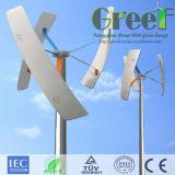 300W pequeña turbina de viento vertical Kit de Inicio