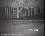 Полная камера ночного видения HD Onvif ультракрасная для обнаружения 300m