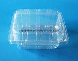 Contenitore impaccante di imballaggio per alimenti della frutta di plastica del contenitore 250 grammi per il mirtillo