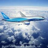 Envío China del flete aéreo a los E.E.U.U. Seattle Newyork Los Ángeles