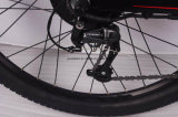 """Bicicleta elétrica de 350W com eletricidade elétrica de 29 """""""