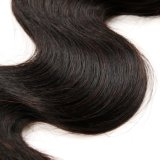 Tessuto brasiliano dei capelli