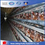 La capa de batería automática de las Aves de Corral de Pollos de la jaula de pollo