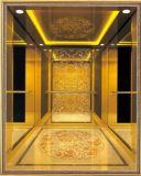 يقود [فّفف] [جرمن] محترفة إلى البيت دار مصعد ([رلس-226])