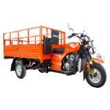 Triciclo carga CH250-um