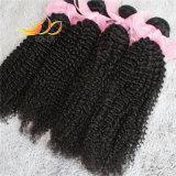 8Aねじれたカールのビルマのバージンの人間の毛髪のRemyの毛の織り方