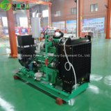Generatore del gas naturale del rifornimento 100-300kw di fabbricazione/generatore naturale