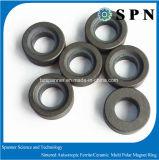 알파철 자석 /Ceramic는 모터를 위한 자석/알파철 이방성 다극 반지를 소결했다