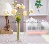 Tall Cristal floreros, jarrones de cilindro de clara