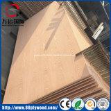 4*8 Bintangor/madeira compensada comercial do pinho/Poplar/vidoeiro para a mobília e o empacotamento