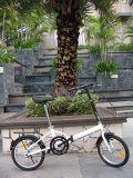 Bicicleta dobrável (FST-161)