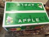 FUJI exportador fresco, gala, de oro, Qinguan Apple