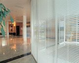 Aluminiumfenster mit Mittler-Scheibe und Partition-Vorhängen