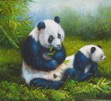 Panda Law (A38)