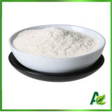 Food, Pharma, Tech Grade Xanthan Gum