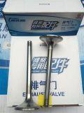 Klep van de Uitlaat van Deutz van de Motor van Weichai 226b 12159606