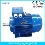 Электрический двигатель индукции AC Ye3 200kw-8p трехфазный асинхронный Squirrel-Cage для водяной помпы, компрессора воздуха