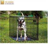 Gabbia piegante del cane della Camera dell'animale domestico del nastro metallico